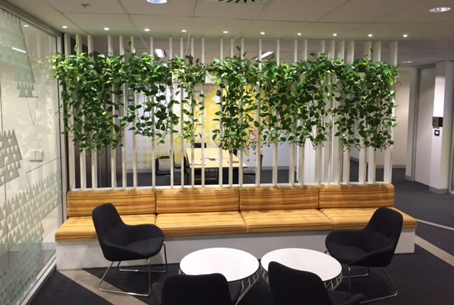 Indoor Plant Hire Office Plant Rental Office Plant