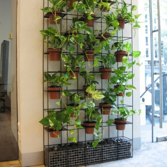 green wall office modern potted green wall natural walls modern office plants